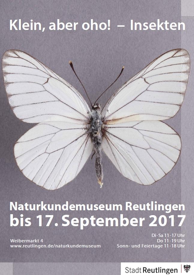 """Plakat zur Ausstellung """"Klein, aber oho! - Insekten"""""""