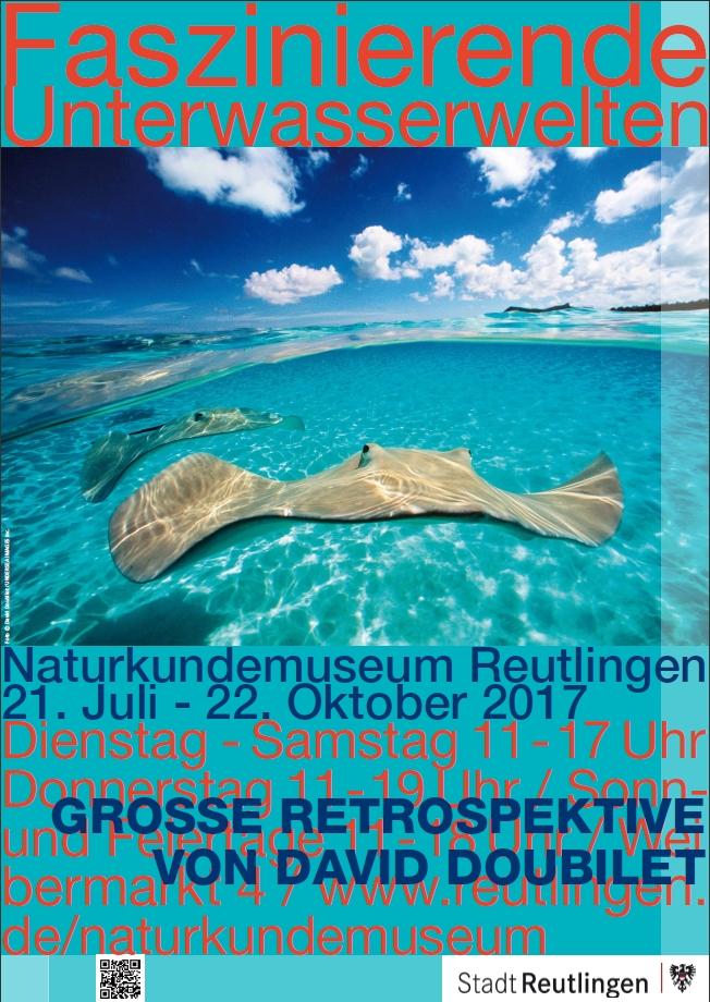 Plakat zur Ausstellung Faszinierende Unterwasserwelten