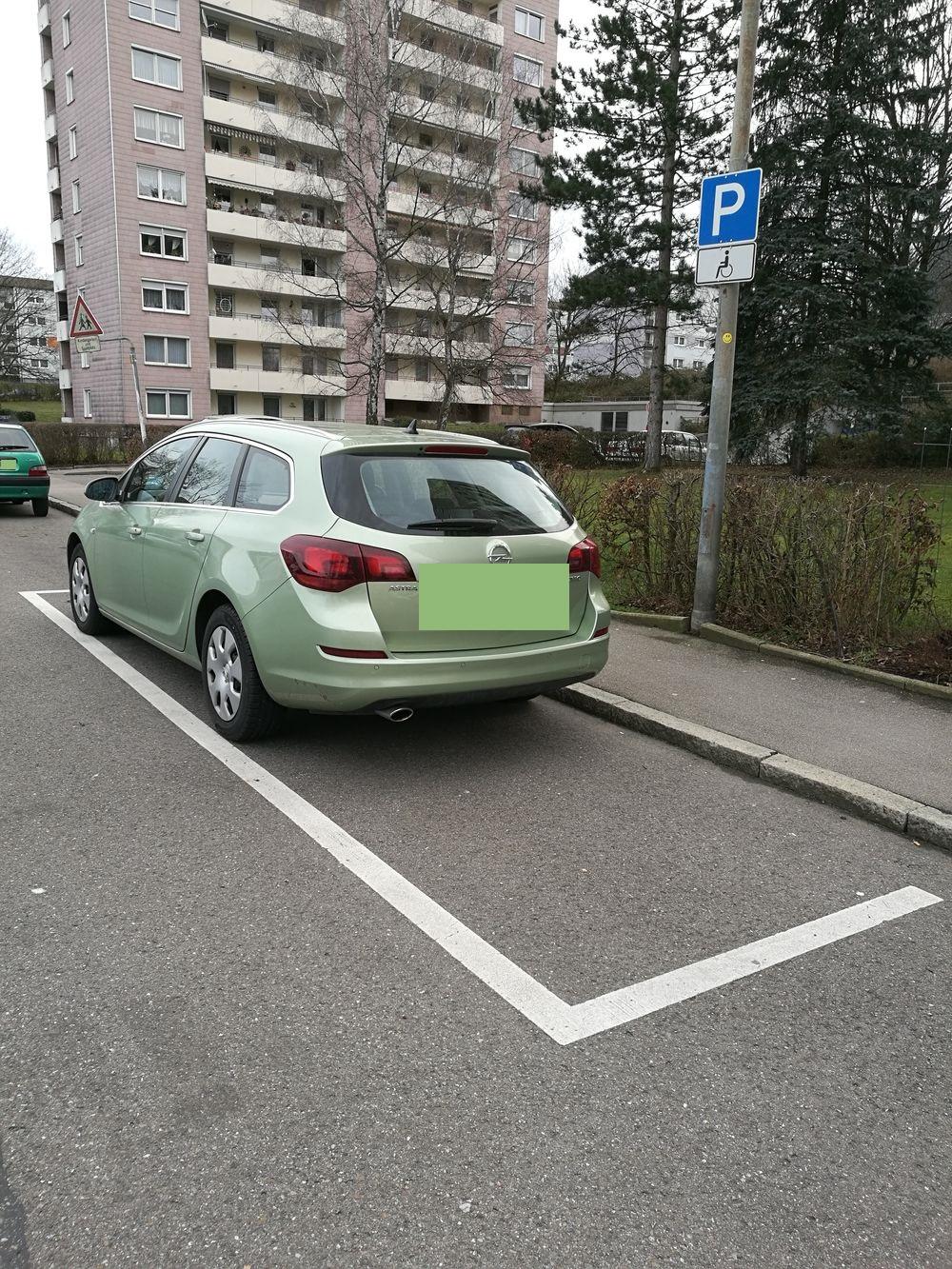 1 Behindertenparkplatz im Grenzweg