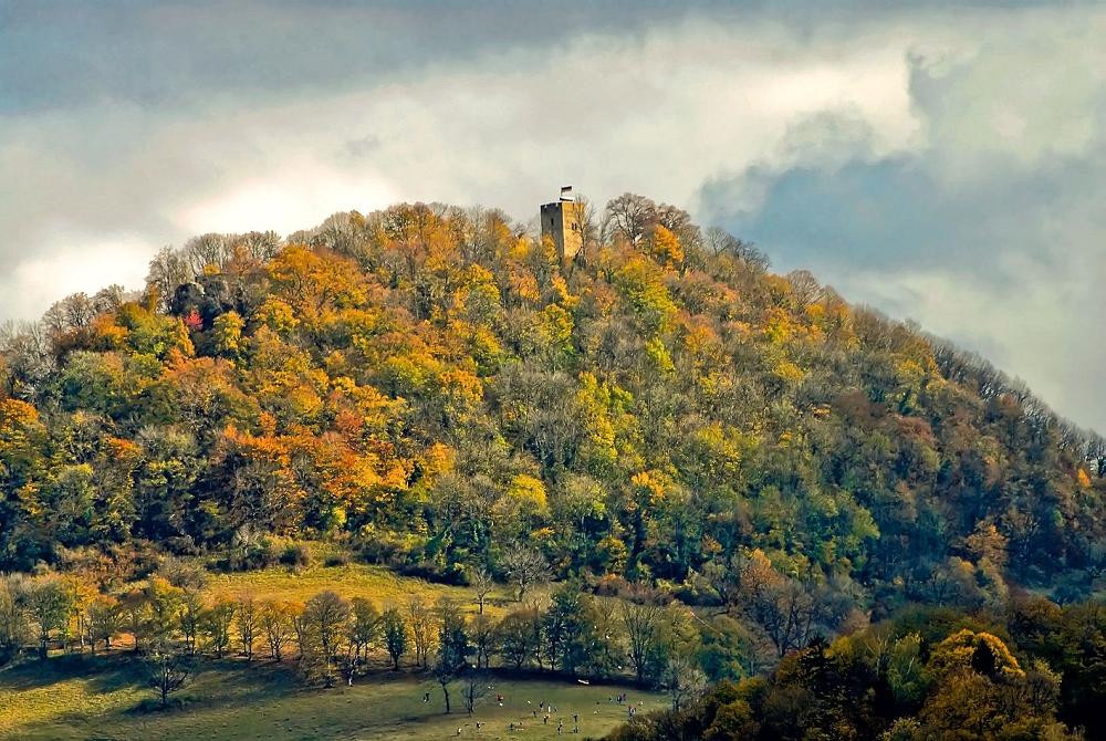 Achalm im Herbst 2006 (StadtA Rt., S 105/20 Nr. 69)