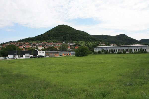 Bierwiesen