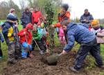 Der Waldkindergarten pflanzt einen Apfelbaum - Foto: Markus Niethammer