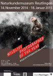 Plakat zur Ausstellung Wildlife Photographer of the Year 2013