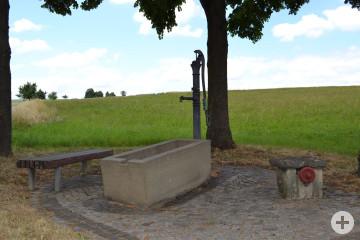Weidenbrunnen
