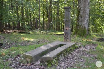 Brunnen Markwasen