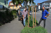 """Mit Gießschlepper und """"Treegator"""" rücken die Technischen Betriebsdienste Reutlingen (TBR) der Trockenheit von städtischen Pflanzen auf den Leib."""