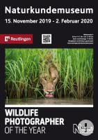 Plakat zur Ausstellung Wildlife Photographer of the Year - Zu sehen ist ein Löwe beim Wassertrinken
