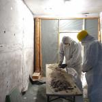 Zwei Bauforscher sind dabei die aus den Decken entnommene Sägemehlschüttung auf Fundstücke zu untersuchen.