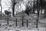 Holzkreuze am Schönen Weg, errichtet durch Angehörige der Erschossenen, Foto Carl Näher, 1951, Sta Stadtarchiv Reutlingendtarchiv Reutlingen
