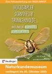 """Plakat zur Ausstellung """"Hochstapler, Schnüffler, Trunkenbolde..."""" - Zu sehen ist ein Hornissen-Glasflügler"""
