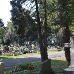 Grabmäler auf dem Friedhof Unter den Linden