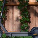 Ein schwarzer E-Scooter von der Seite. Der Scooter steht vor einer bewachsenen Holzwand. Foto: aixklusiv, Pixabay