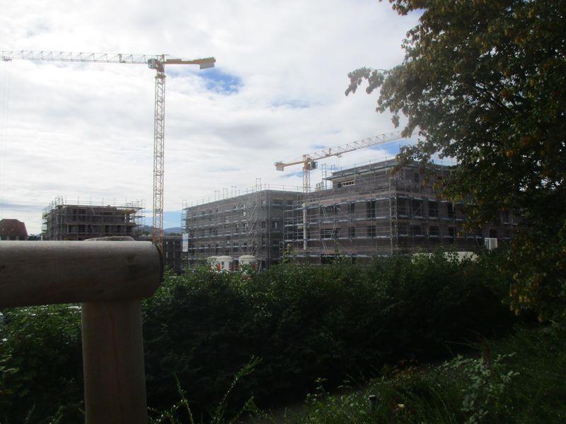 Bauphase Städtisches Kinderhaus Alice-Haarburger-Straße September 2019