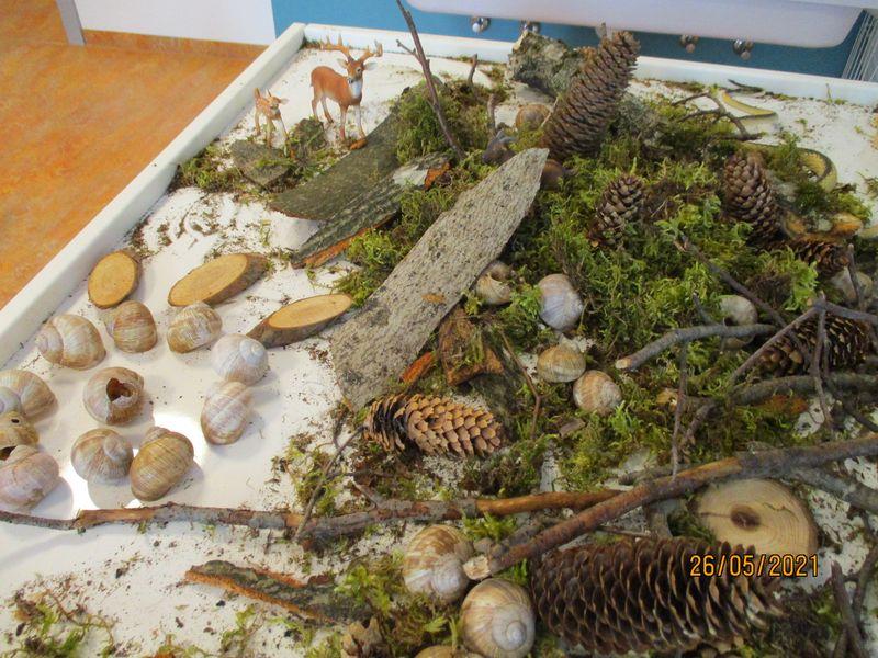 Städtisches Kinderhaus Alice-Haarburger-Straße - Tisch mit Naturmaterialien im Forscher-Zimmer