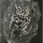 The eternal Owl