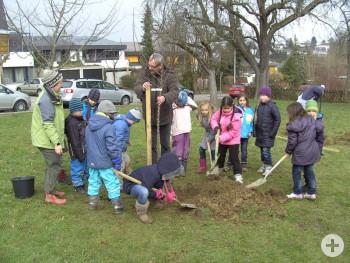 Die Teilnehmer des Projekts pflanzen einen Baum