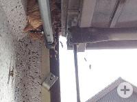 Zwischen Garagendach und -Tor haben sich Hornissen häuslich eingerichtet