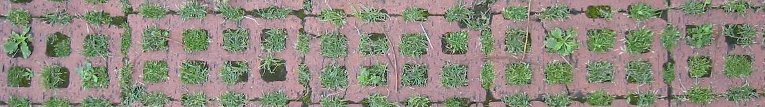 Rasengittersteine