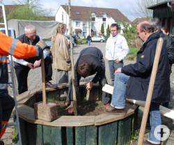 Die Vertreter der Stadt und der Baumschulen stehen im Kreis um ein Holzrundel. Ein Arbeiter steht auf einer Leiter und hält einen großen Holzhammer. Ein weiterer Mann bückt sich im Rundel und bedeckt den Baum mit Erde.