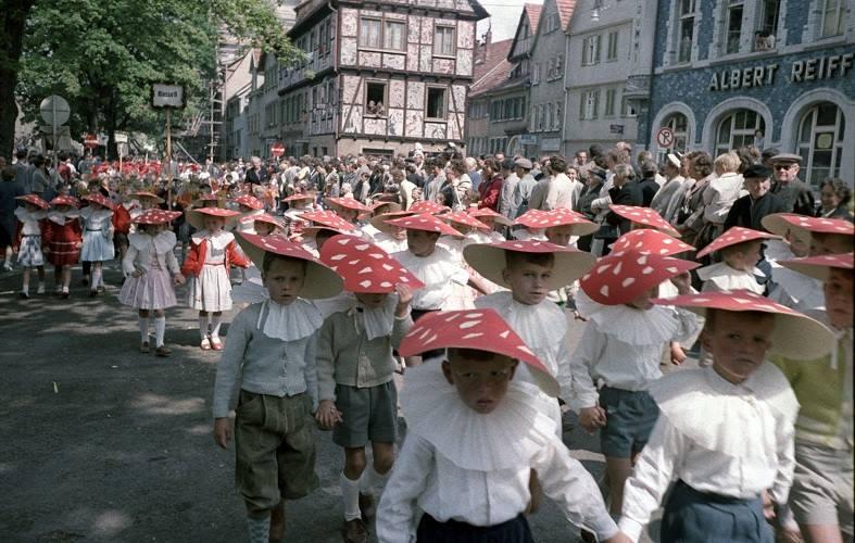 Kinderfest Fliegenpilzkostüme