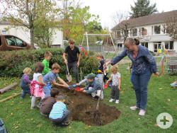Die Kinder des Kindergartens Bronnweiler mit Anke Bächtiger von der Stabsstelle Bürgerengagement beim Pflanzen des Apfelbaums