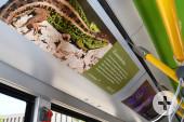 Innenansicht des Alpenbock-Busses